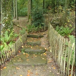 Steps on the left side