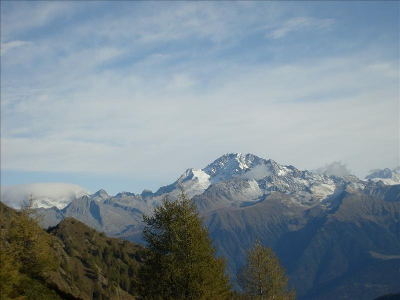 vista dal Monte Pisello•Piz Bernina•2009
