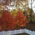 October 2009 view from the deck