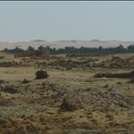 Siwa - Woestijn
