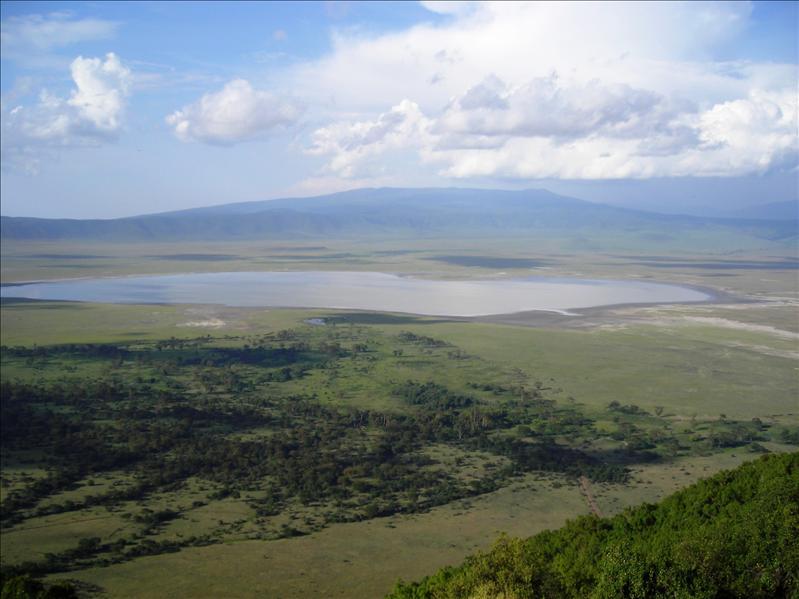 Ngorongoro crater•Tanzania