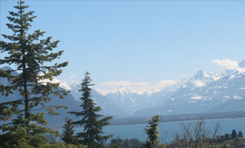 vue•lac•2008