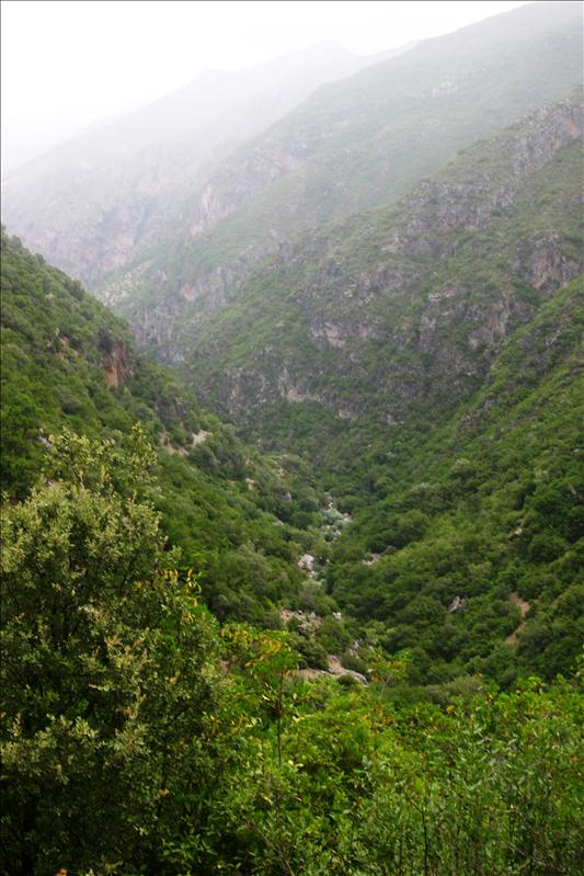 Oued Farda river valley