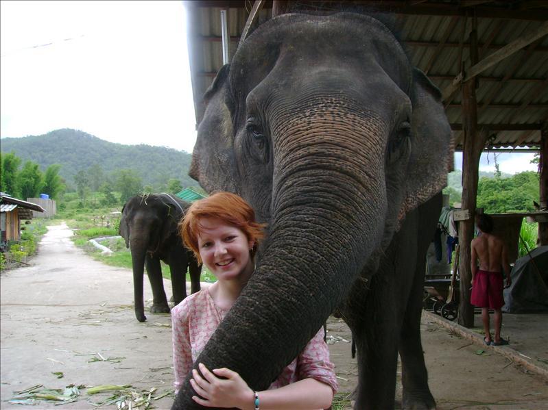 Elephant Riding, Pai