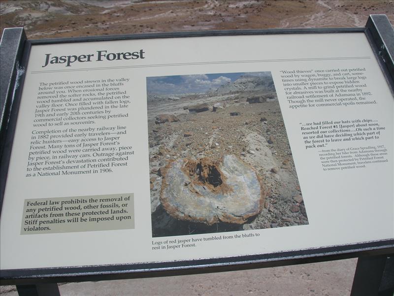 Jasper Forest
