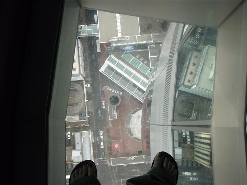 Through the damned glass floor in Sky Tower - 200 m down!!