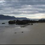 Island2008 142.jpg