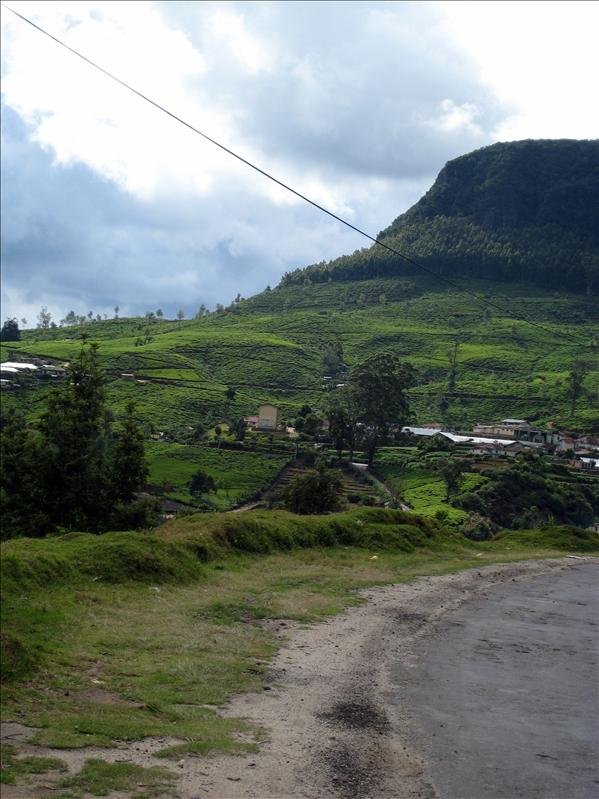 Road to Nuwara Eliya