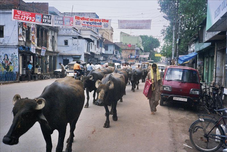 Varanasi - Soul India
