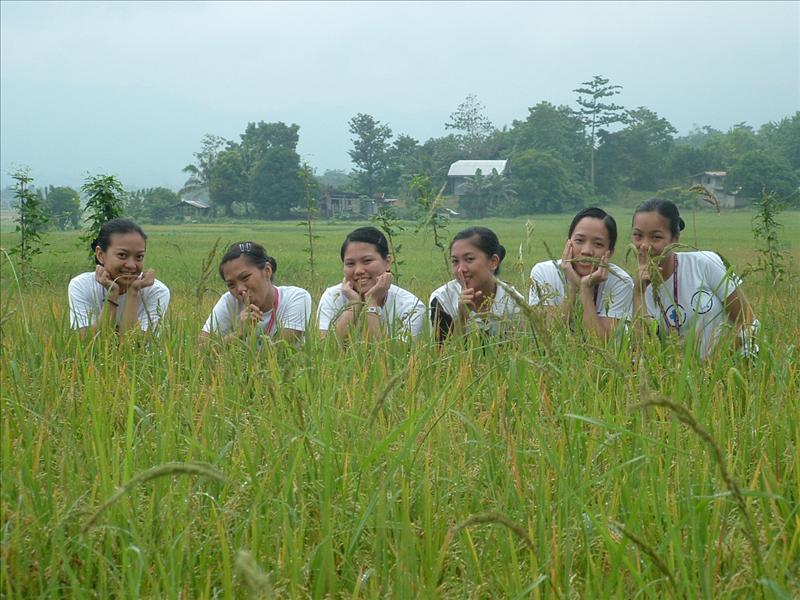 my silly friends making trip on the rice field