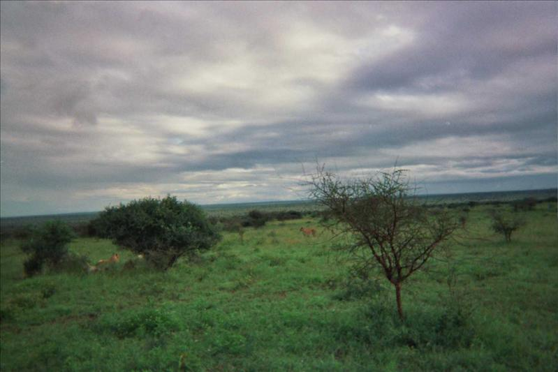 Taita Hills © Fernando López