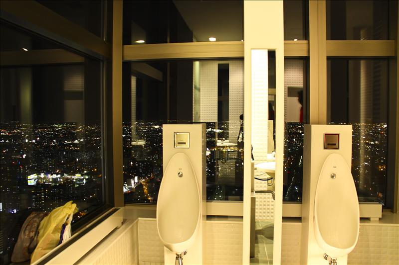 The toilet with the best view in the world!