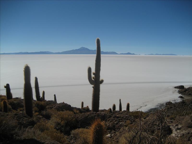 Isla Pescado.jpg