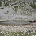 lago della duchessa con rik - 31.08.08 (35).jpg