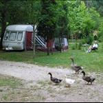 Our rural campsite near Ribeira.....