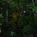 botanical garden visit 10-06 009.jpg