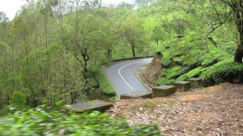 lotsa scenic drives in Munnar
