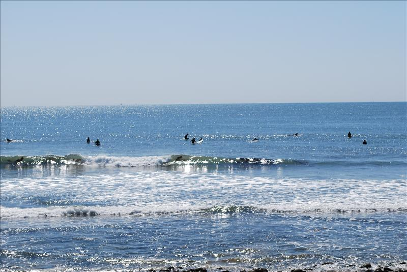Ventura Surfers