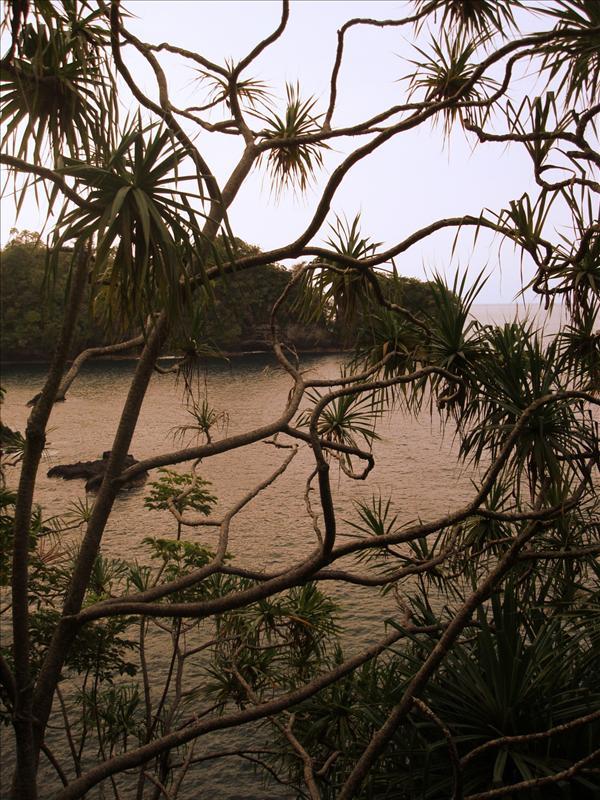 Hilo - Evening scene