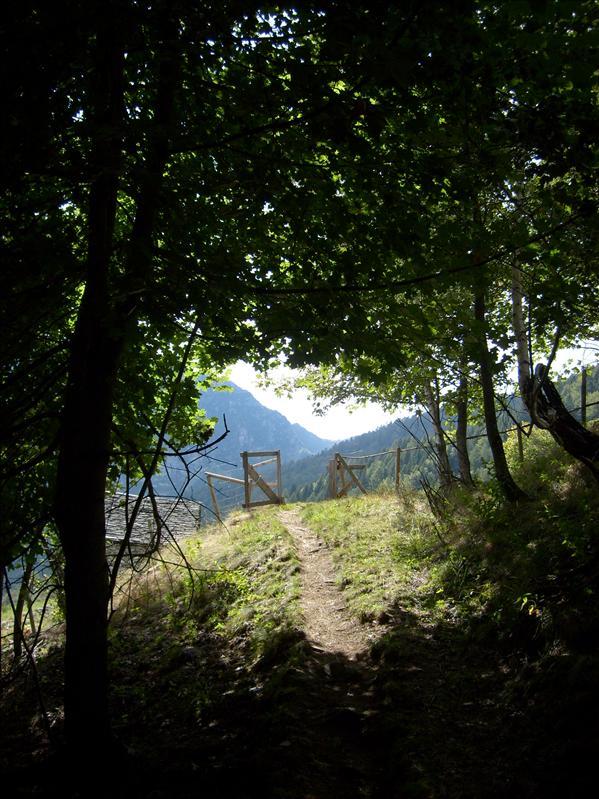 Alpe Alzasca•2009