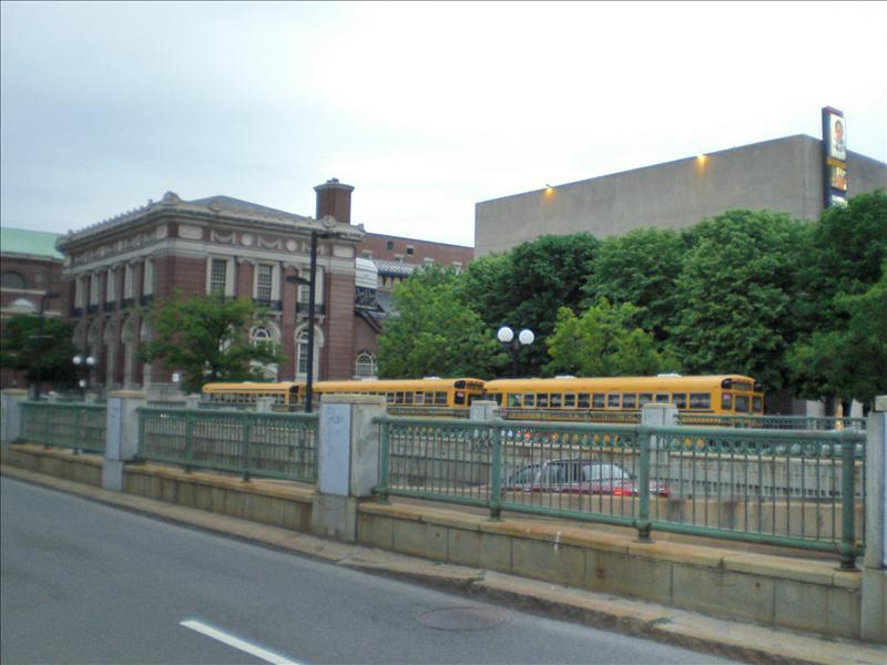 schoolbussies