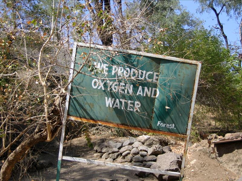 We produce oxygen and water