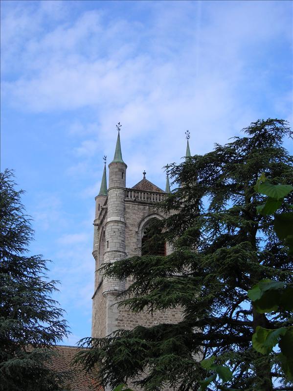 Église St-Martin•Vevey•2008