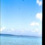 B 52 desde la playa