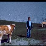 Con vacas