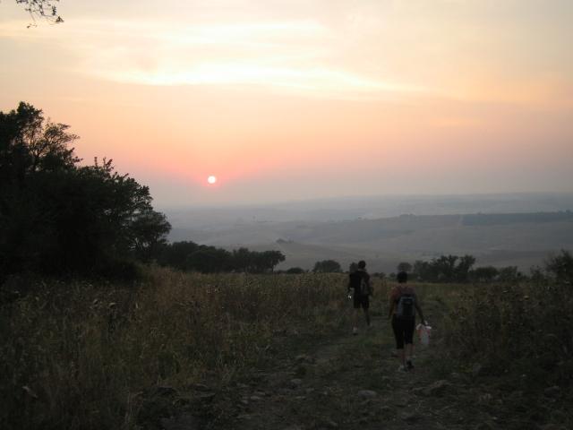 ripa 2008 (36).jpg