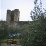 monteriggioni (13).jpg