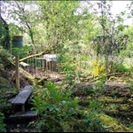 GARDEN, BUNCHREW, MAY 2006