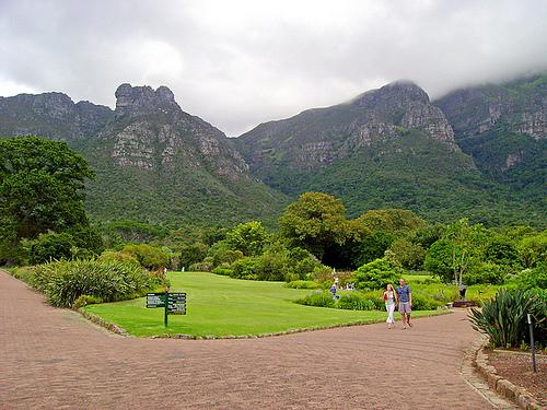 Kirstenbosch Botanical