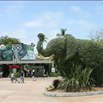 san diego zoo1.jpg