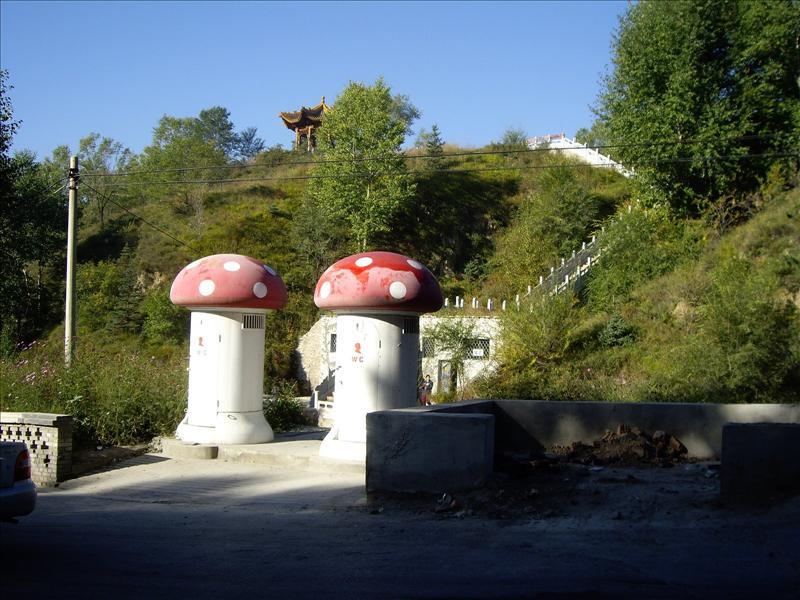 two mushroom shaped toilets