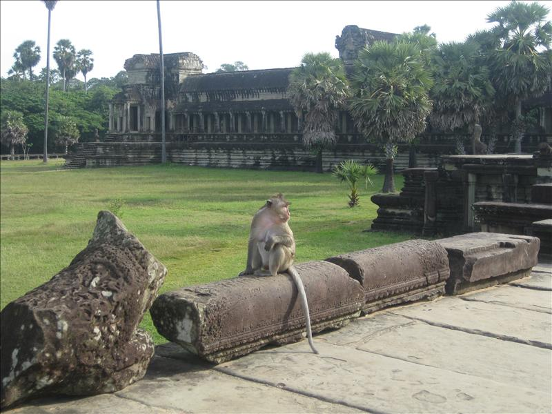 Angkor is widely believed to be the largest religious strukture in the world.