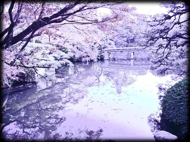 Sorakuen Garden (Stone Cold)