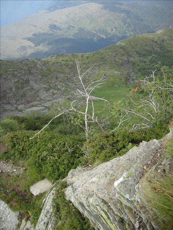 discesa dal Monte Zeda•Piemonte•2009