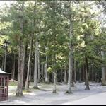 瑞巖寺庭園