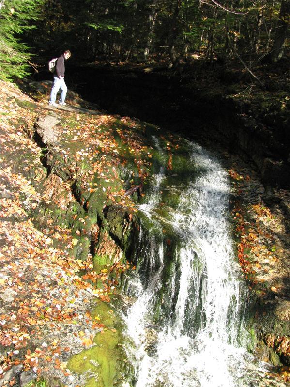 watervalletje zomaar in het bos