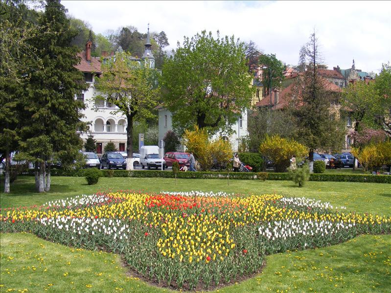Central Park Nicolae Titulescu