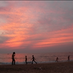 Goa with Fedde