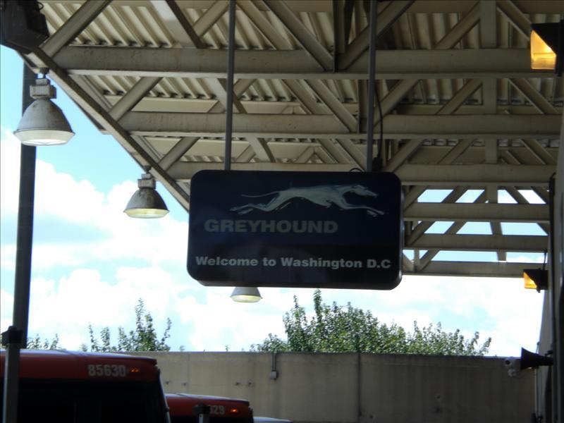 de volgende dag met de greyhound naar Washington DC