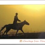 MongoliaTrip