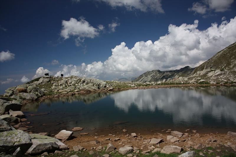 Същото езерце, с поглед към Синаница.