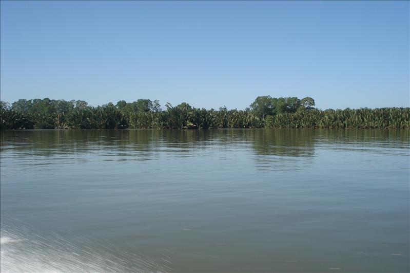 view of river, timburong to bandar