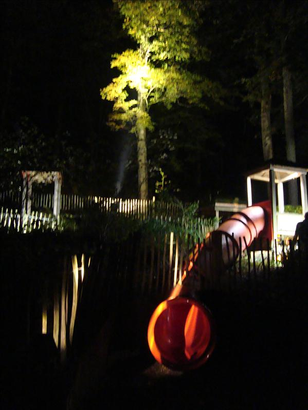 Red tube with the maxi woody illuminating the tree