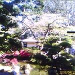 IMAGE_00085.jpg
