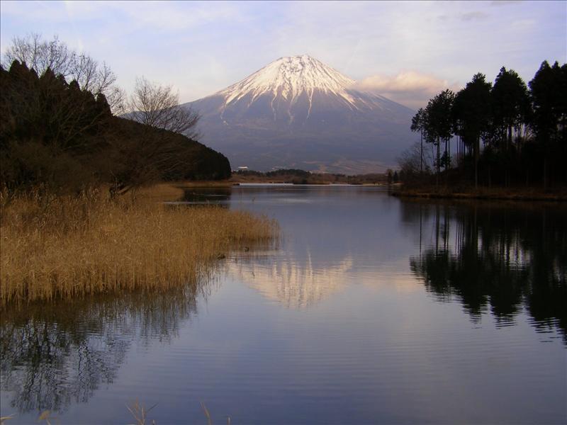 Fujisan•Lake Tanuki