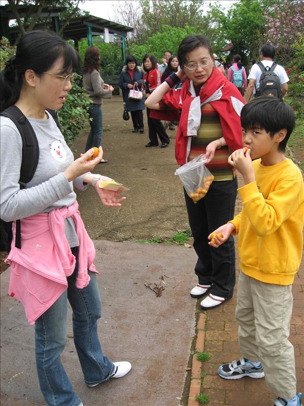 桔子好好吃!